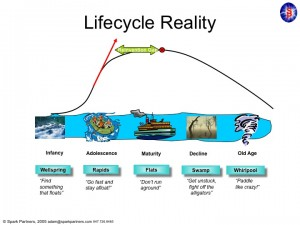 lifecycle slide