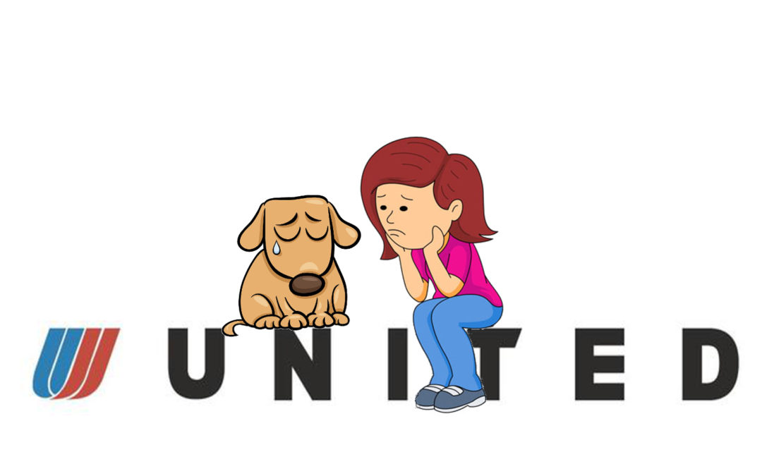 United Airlines – How Bad Strategy Created a Culture That Kills Puppies