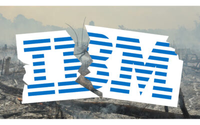 IBM's Demise – Why You Can Do MUCH Better