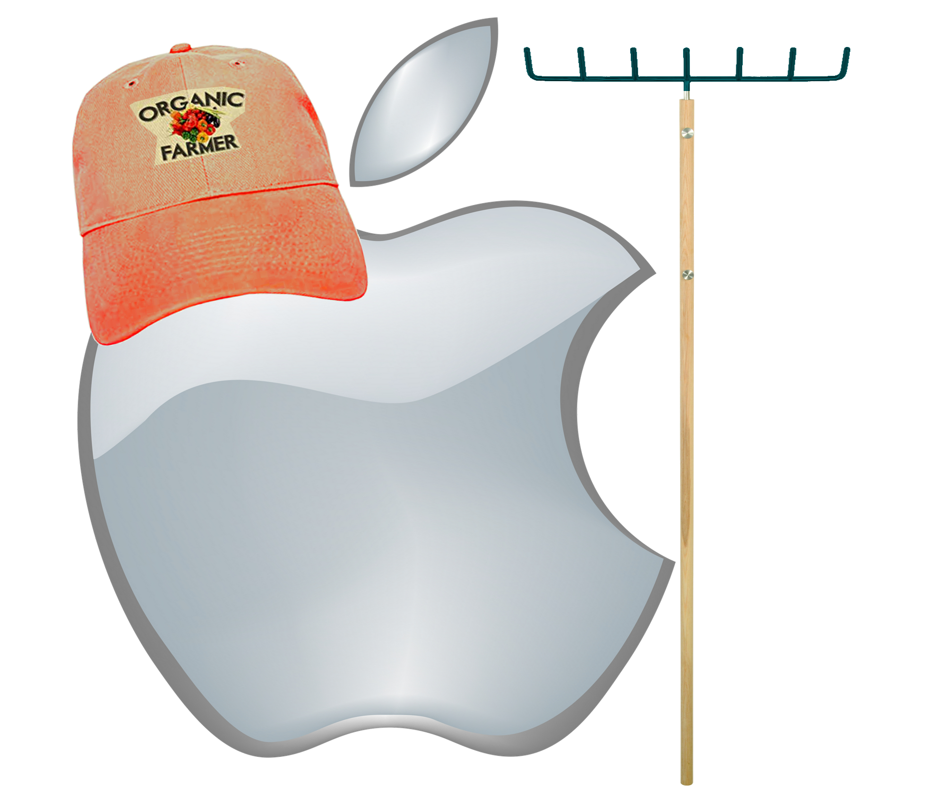 Apple's Installed Base – Foundation for Success, or Curse?